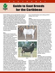 Guide to goat breeds for the Caribbean