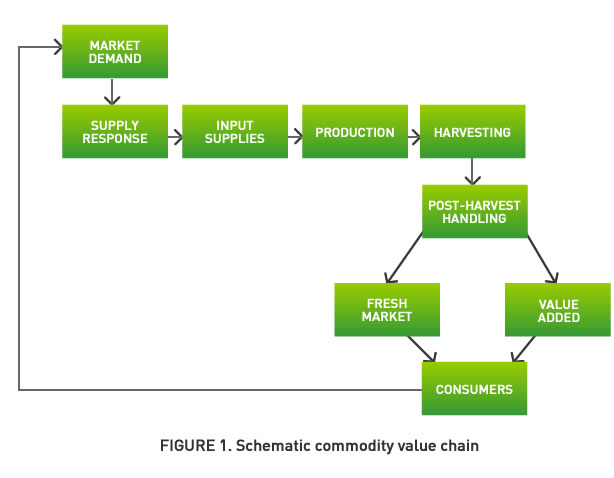 Figure 1. Schematic commodity value chain