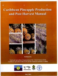 Caribbean pineapple production and post harvest manual