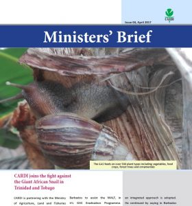 CARDI Ministers' Brief: issue 04, April 2017