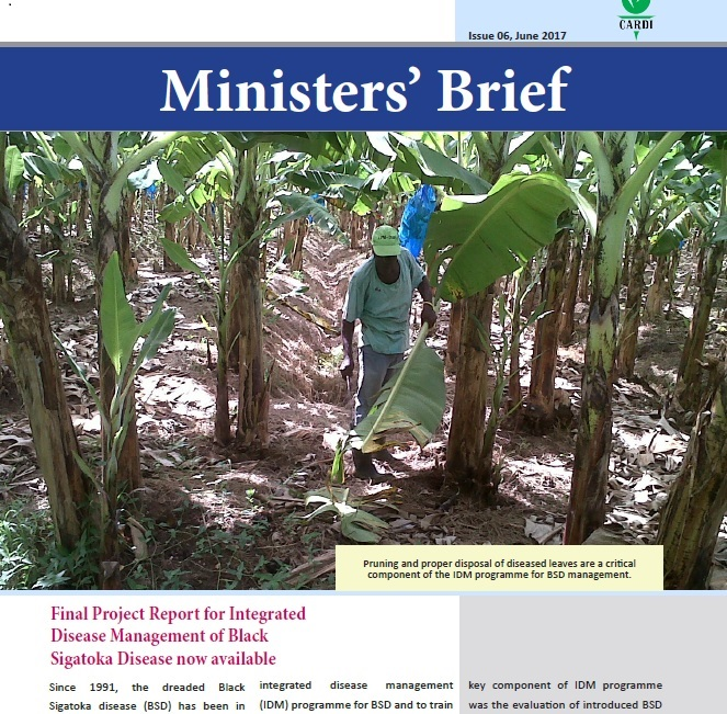 CARDI Ministers' Brief: issue 06, June 2017