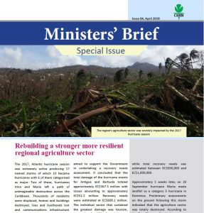 CARDI Ministers' Brief, April 2018: Rebuilding a stronger more resilient regional agriculture sector