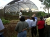 field-trip-workshop-participants-viewing-the-protected-agriculture-structure-c-w640