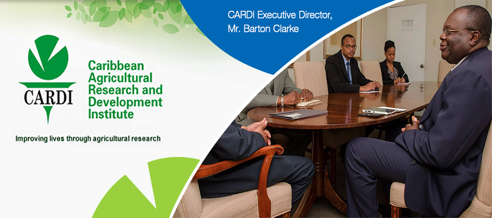 CARDI web banner v2
